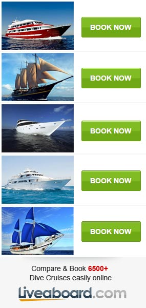 Book a liveaboard diving trip!