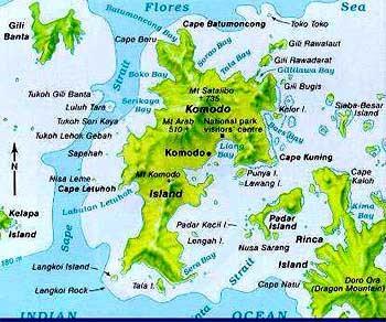 croisiere plongee sous marine komodo indonesie