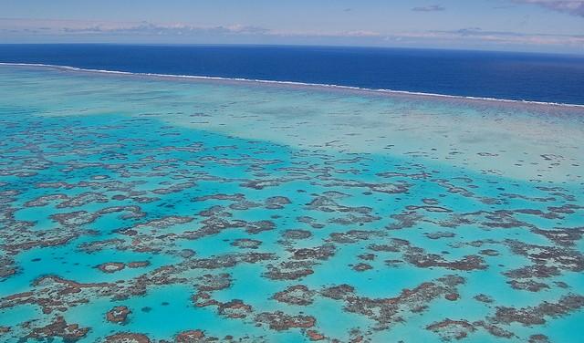 Grande Barrière de Corail Queensland Australie