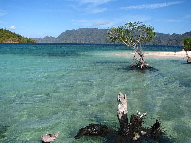 Îmbunătățirea divingului Coron Filipine