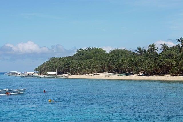 plongée sous-marine bohol philippines