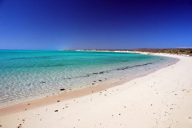 récif plongée Ningaloo en Australie
