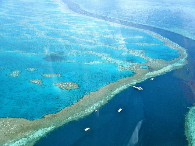 plongée sous-marine grande barrière de corail Australie
