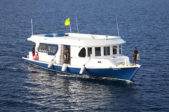 croisière plongée sous-marine aux Maldives