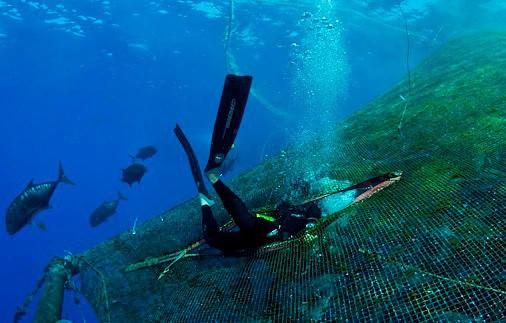 plongeur sur ferme d'aquaculture