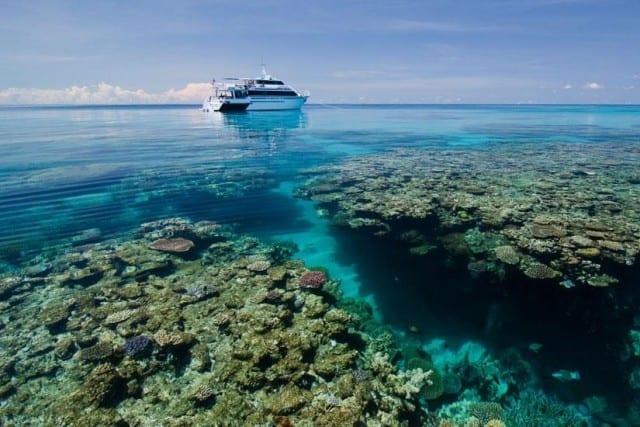 croisiere plongée sous-marineen Australie