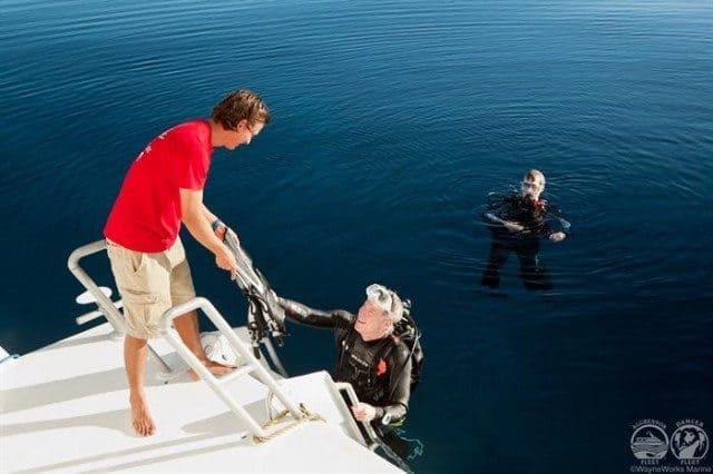 bateau croisiere plongee sous marine turques et caiques caraibes
