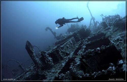 meilleures croisieres plongee sous marine mer rouge