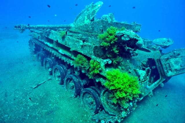 meilleurs sites plongee sous marine aqaba