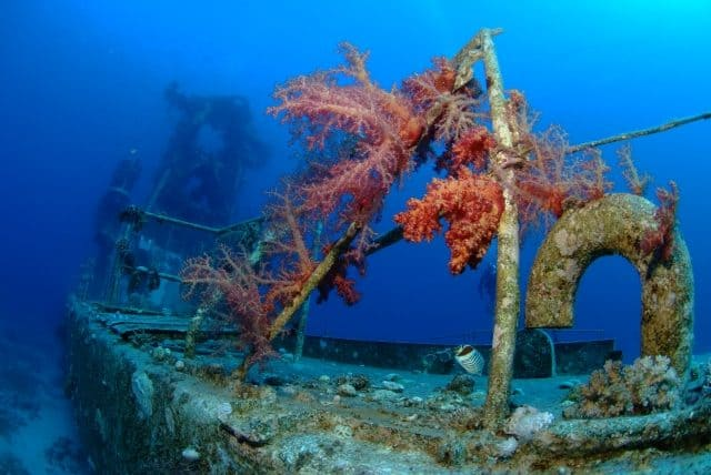 meilleurs sites plongee sous marine a Eilat Jordanie