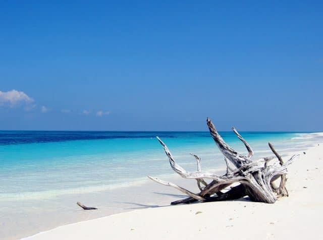 blog plongee destination seychelles
