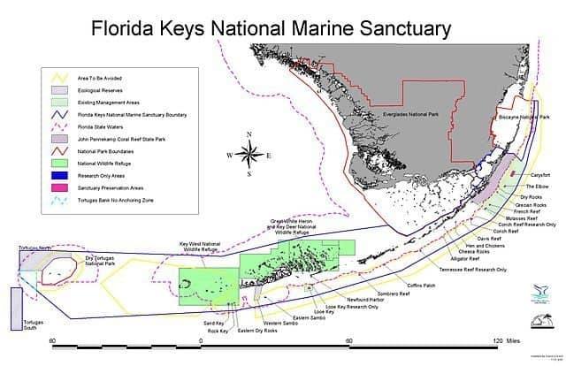 plongee parc marin keys floride