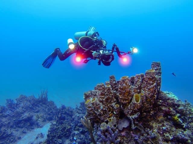 plongee sous marine saba