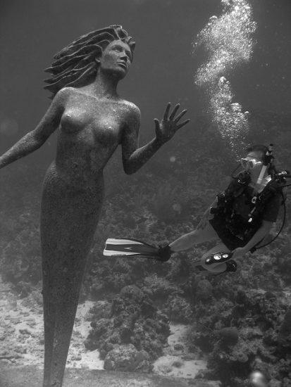 plongee statue grand caiman