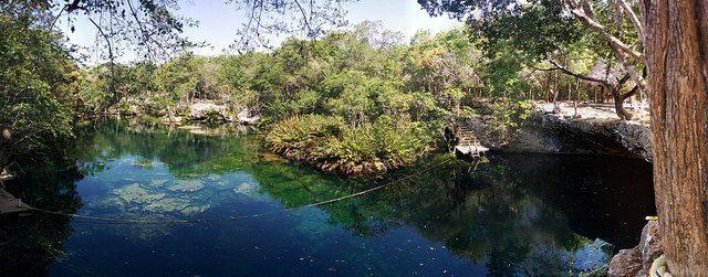 avis plongee cenote au mexique riviera maya