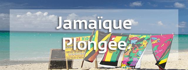 avis plongée sous marine jamaique