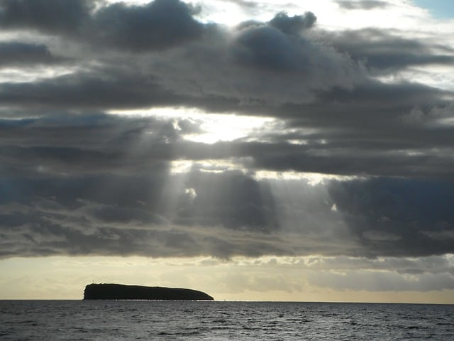 plongee sous marine hawai molokini